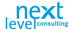 Next Level Consulting Österreich GmbH_logo